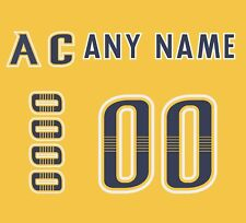 Nashville Predators 2017-Present Home Jersey Customized Number Kit un-stitched