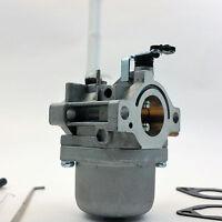 Carburetor for BRIGGS & STRATTON Engines [#796122, #794593, #793161, #696737]