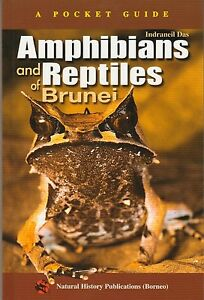 A Pocket Guide: Amphibians and Reptiles of Brunei - Indraneil Das