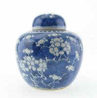 Chinesisches Porzellan Ingwertopf Kangxi blau weiß Prunus Blossom Blüte Kanji