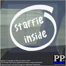 1 x Staffie all'interno-Finestra, Auto, Furgone, STICKER, SEGNO, Adesivo, Cane, Pet, Bull, Terrier