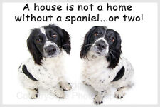 Sprocker Springer Spaniel puppy Dog Fridge Magnet funny Christmas Birthday Gift