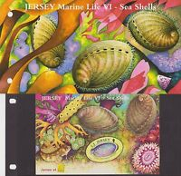 JERSEY PRESENTATION PACK 2006 MARINE LIFE VI SEA SHELLS SHEET OVPT BELGICA '06
