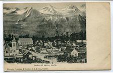 Panorama Valdez Alaska 1907c postcard