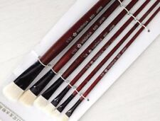 Unbranded Assorted Types Drawing Brushes