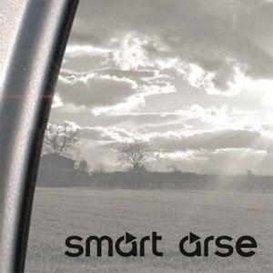 Smart Arse, Smart Car, funny Car, window, bumper, Vinyl Sticker, Graphic Decal