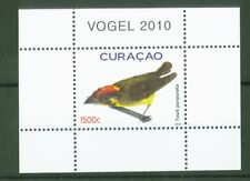 Curacao 2010 - Vögel Bird Oiseau Uccello Fugl Breitschnabeltyrann - Block 1