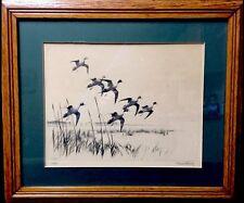 Vintage Signed RICHARD E. BISHOP 'PINTAILS' ETCHING~ 1932 ~ Listed Artist