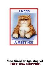 164 - Alcoholics Anonymous  AA Refrigerator Magnet- I Need a Meeting Grumpy Cat