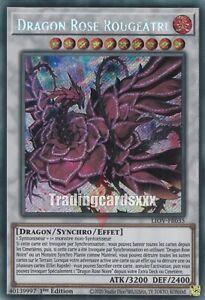 Yu-Gi-Oh! Dragon Rose Rougeâtre : SE LIOV-FR035