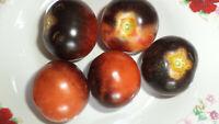 Osu Blue Tomaten Samen 10 Saatkörner neue Ernte 2020  bio Anbau Nr.66