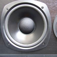 """Reparatur Sickenerneuerung 10"""" Peerless Bass aus Orbid"""