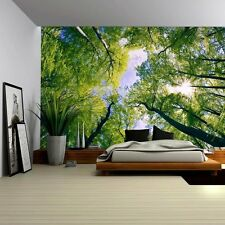 Sky View from Below a Tree Forest - Wall Mural, Removable Sticker - 100x144