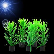 Aquarium Deko 🍀 5x WASSERHECKE MINI 🍀 Aquascaping Wasserpflanze Zubehör (VO)