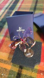 SWAROVSKI Statuetta Farfalla Cristallo Paradise PULCHER Violet rosa Butterfly