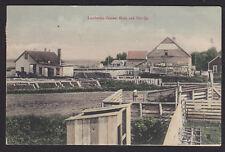 Minnesota-Lamberton-Cement Block and Tile Co-Antique Postcard