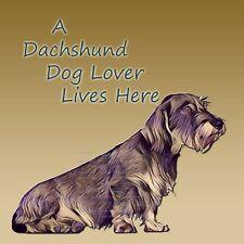 DACHSHUND WIRE HAIRED DOG LOVER NEW HARDBOARD PLAQUE TILE b SANDRA COEN ARTIST