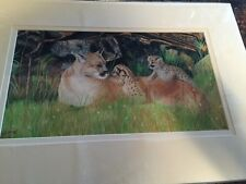 Beautiful signed limmited edtion 3/50 colored pencil painting by Janet Collins