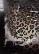 lot of 3  LEOPARD  ANIMAL PRINT PLUSH FABRIC BROWN WHITE BLACK