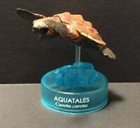 Kaiyodo Glico Aquatales Loggerhead Sea Turtle Japan Exclusive Figure Model