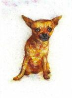 Dog painting abstract original watercolour art animals pet 8 x 12 in signed
