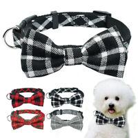Collar de perro de nailon accesorios de perros collares para Chihuahua Yorkie