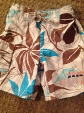Charlie Rocket Boy 3T Brown And Turquoise Swim Trunk