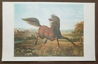 """The Neigh of an Iron Horse by A. Tapy 22x14"""" Vintage 1960's Lithograph Shorewood"""