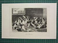 1900 Sporting Estampado ~ Frost Ruptura ~ Hounds