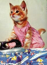 Print.  1964.  Housewife Cat Ironing
