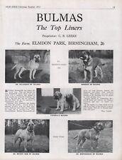 BULLMASTIFF DOG BREED KENNEL ADVERT PRINT PAGE BULMAS KENNELS OUR DOGS 1951