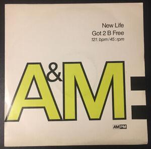 "NEW LIFE - GOT 2 B FREE - 12"" vinyl single UK AMY582 A&M 1990 VG+/VG+"