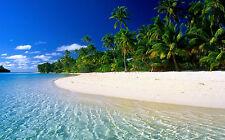 Framed Print - Palm Trees on a Tropical Island Beach (Ocean Picture Sea Waves)