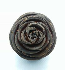 10 South Africa Spiral Cone Natural Floral Decoration Botanicals Potpourri