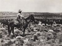 1908/52 Vintage WESTERN COWBOY COW Horse Roundup 11x14 Photo Art ERWIN E. SMITH