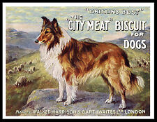ROUGH COLLIE GREAT VINTAGE STYLE DOG FOOD ADVERT PRINT POSTER