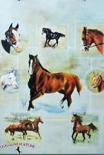 Horse Gift Wrap Present Wrapping Paper