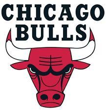 Chicago Bulls # 11 - 8 x 10 - T Shirt Iron On Transfer