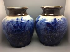 PAIR OF LARGE VICTORIAN POTS / JARS WITH BUTTERFLIES & FLORA IN FLOW BLUE