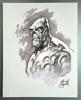 Comic Originalzeichnung | Eric Powell (signed) | SWAMP THING PinUp