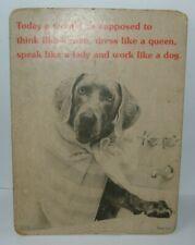 vintage Walter Chandohna Dog cardboard photo poster sign April House 1975 ad