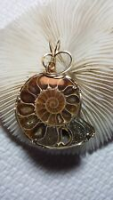 Ammonite pendant, wire wrapped in  14 k gold filled wire  by Barb's Design