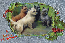 Cairn Terrier Dogs by Fanny Moody 1897~ 8 Large New Christmas Note Cards
