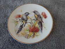 Holly barn porcelaine fine plaque. australian ou nz miel mangeurs oiseau plaque
