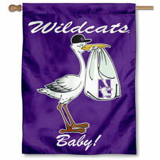 Northwestern University New Baby Born Decorative House Flag