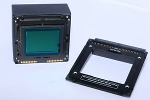 Sinar eVolution 75H medium format Digital Back with Sinar p3 adapter. COMPLETE.