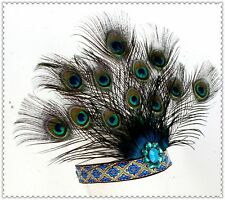 Peacock Eye Feather Headband Headpiece Carnival Party Stage Show Headdress