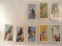 *PETS CARDS BY HORNIMAN'S TEA X 8**