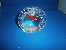 Murano Glass Gold Fish in Tank Paperweight Original Sticker