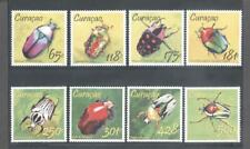 (867655) Insects, Beetle, Curacao